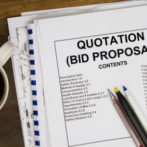 How to Create a Proposal RFP Outline For Government RFPs